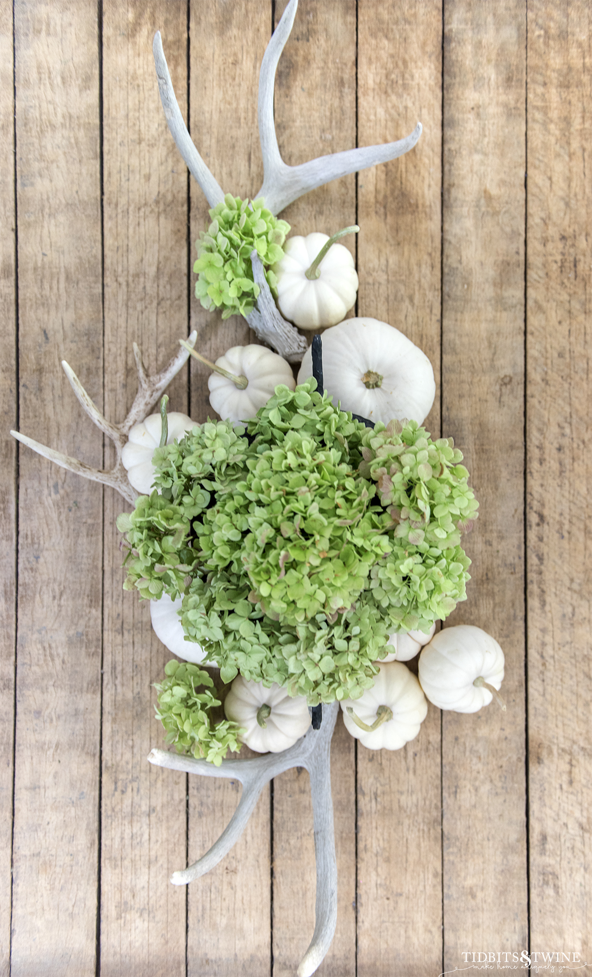 top down view of dried green hydrangeas in an urn with antlers and white pumpkins on top and bottom on industrial table top